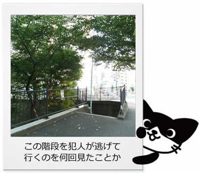 空蝉橋 (うつせみはし)